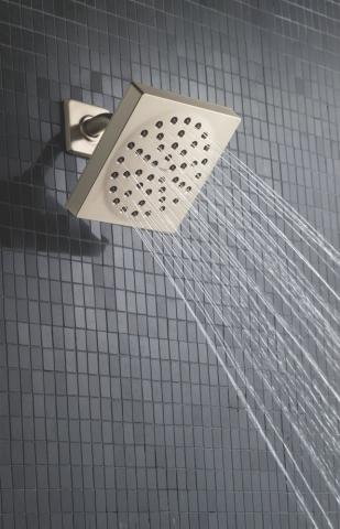 Moen Shower Head Repairman